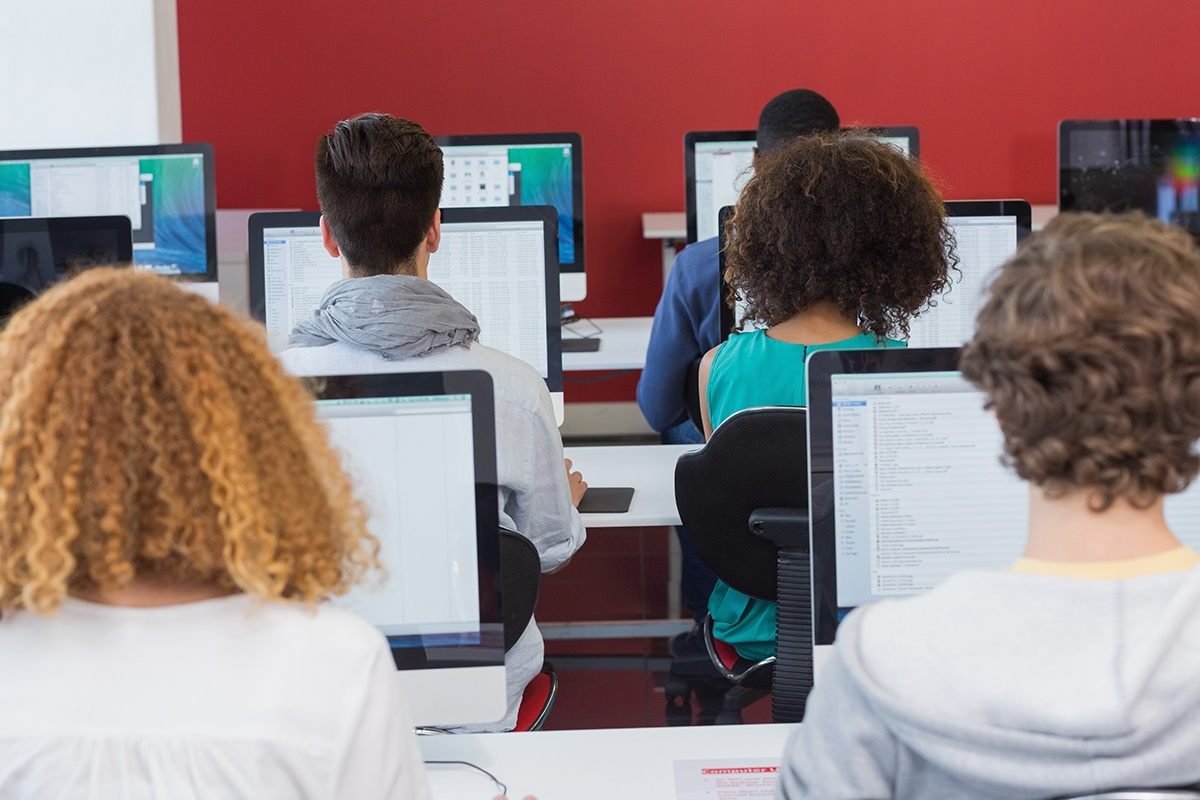 See How Programmers Teach Computers